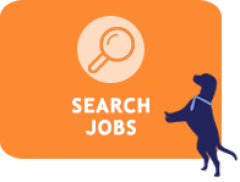 Search Job Listings